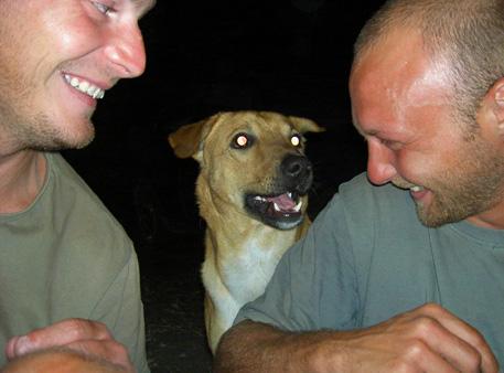 chien nata lodge botswana