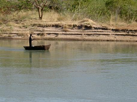 Bark on the kunene river