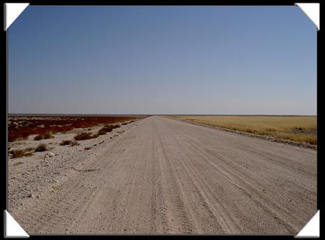 paysage etosha