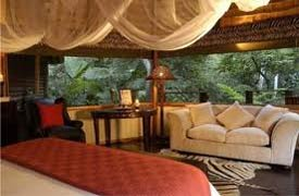 Serenity Forest Eco Reserve Hotel