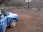 Camp Satara Park ( Kruger )