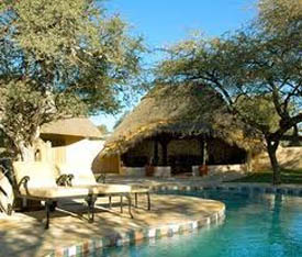 Zebra Kalahari Lodge Mariental