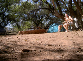 Le Bush Camp au waterberg