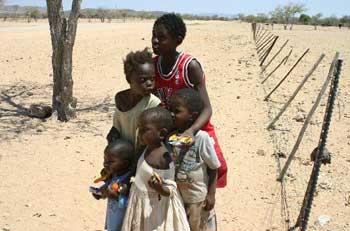 namibie damaras