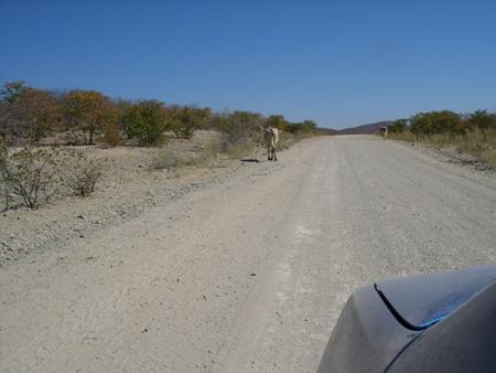 road  d3700
