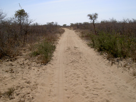 trail bushman village near tsumkwe