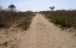 piste village san a tsumkwe en namibie