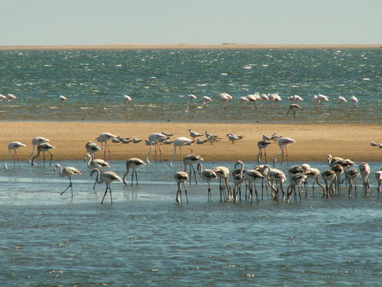 Walvis Bay Namibia  city images : Walvis Bay | Namibia Travel Guide | Arroukatchee