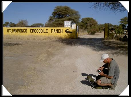 otjiwarongo crocodile ranch