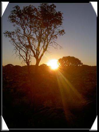 beau coucher du soleil