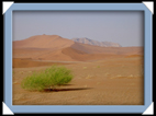 la plus haute dune de Namibie