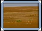 photos sossusvlei park namib Namibie